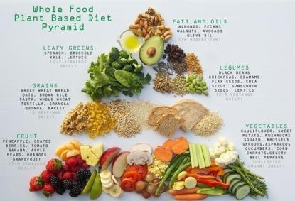 plantfood